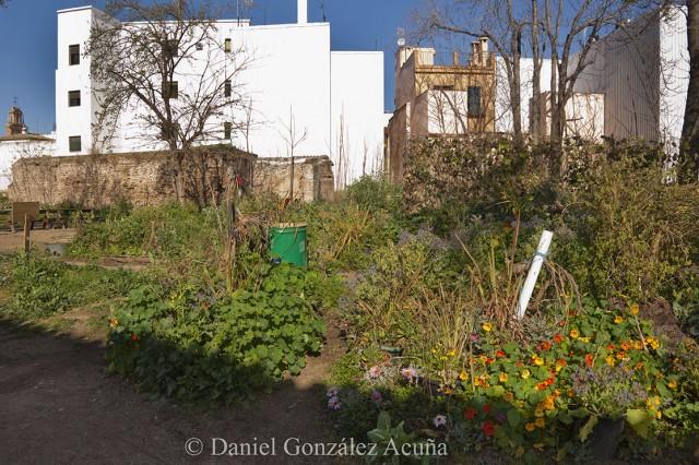 Huertos cultivados siguiendo la práctica de la permacultura